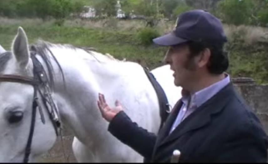 Come Costruire Un Cavallo.Un Cavallo E Per Sempre Parte 2 L Isola Delle Colombe